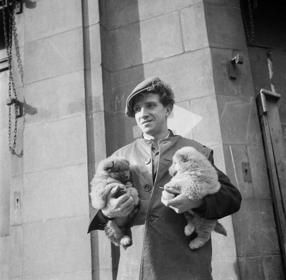 Merchant holding puppies at the market of Petticoat Lane, London
