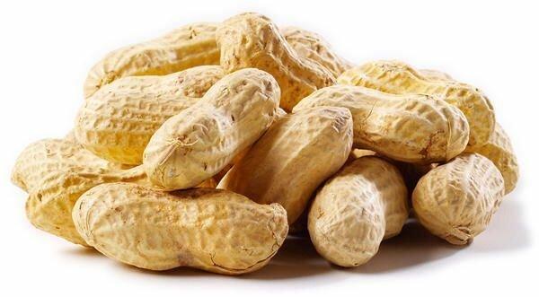 земляной орех - арахис