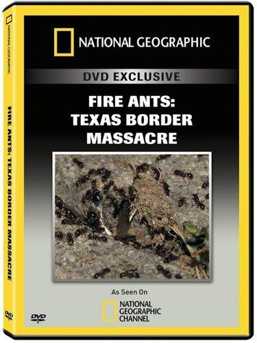 Пограничные войны /Fire Ants: Texas Border Massacre | Смотреть онлайн / Скачать (документальные фильмы)(животный мир)