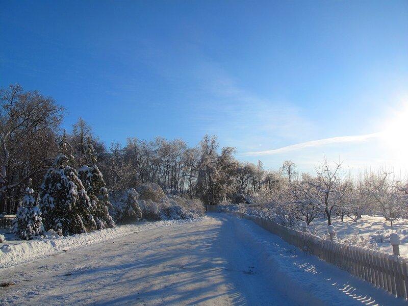 Зима,с.Остров,подворье