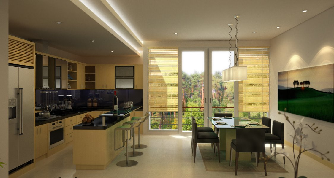 Dining room and kitchen designs
