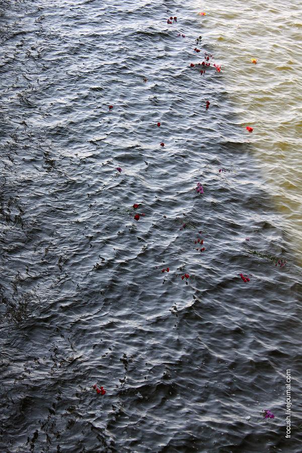 Возложение цветов на воду перед Мамаевым курганом с борта теплохода «Сергей Кучкин» 22 августа 2010 года