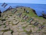 Ирландия метки путешествия туризм индивидуальный_туризм