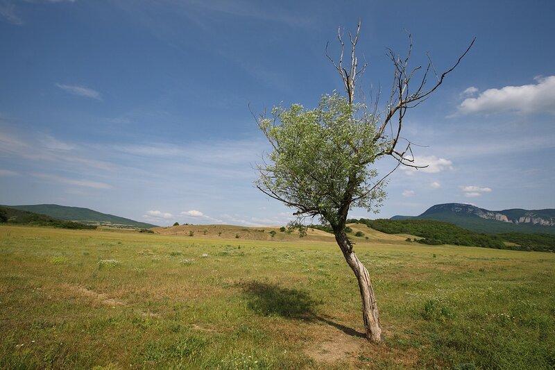 Крымский ландшафт.