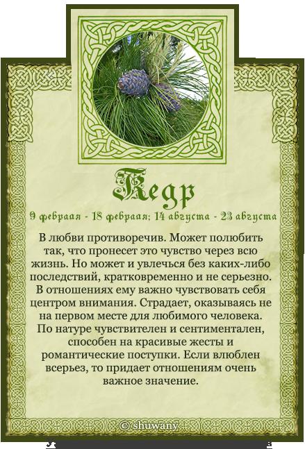 новым поздравления календарю друидов начинается новой