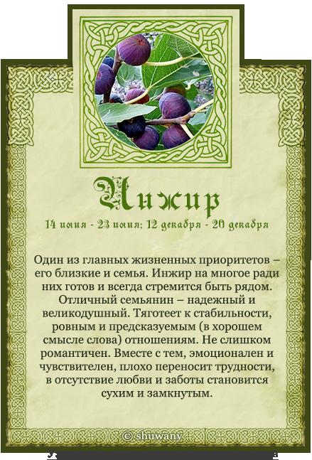 поздравления календарю друидов особенно