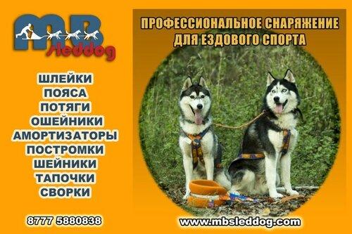 0_14b188_fb85ed14_L.jpg