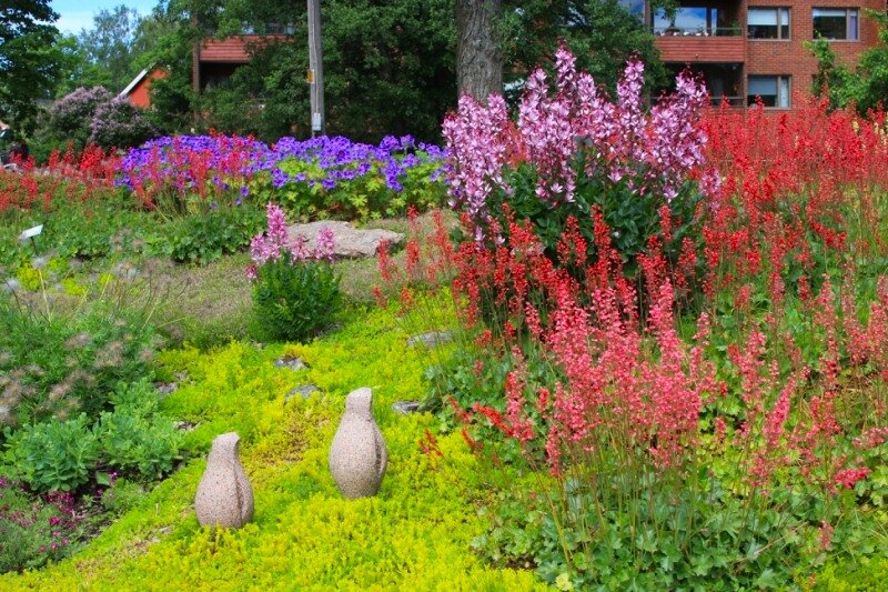 трава и цветы