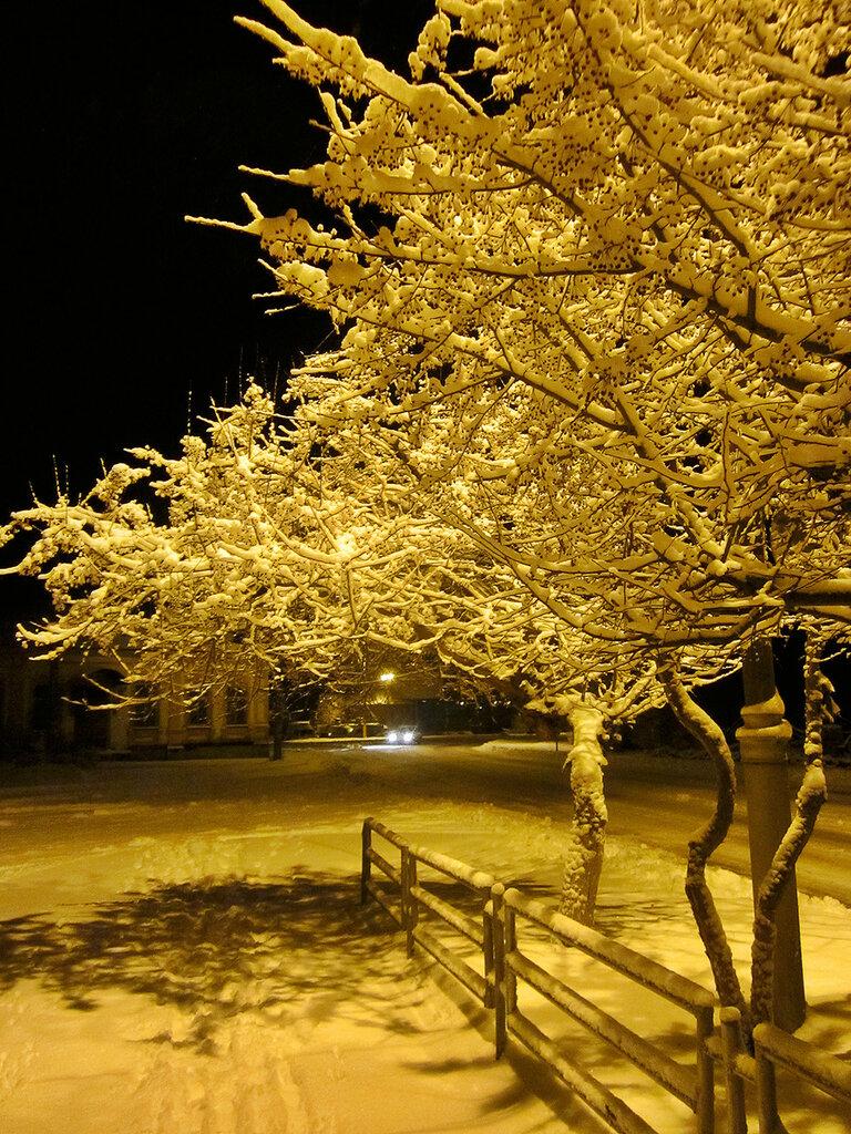 Первый серьёзный снег в Троицке