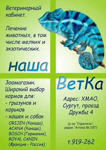 http://img-fotki.yandex.ru/get/5302/murrrr-murrrr.2c/0_7657f_7c68aea1_L.jpg