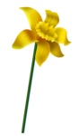 «Designs By Ali_Hoppity Easter» 0_55819_eaa7b272_S