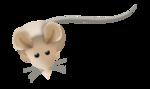 «Мышиная сказка.WR Mouse Tales» 0_5b115_9481a9b5_S