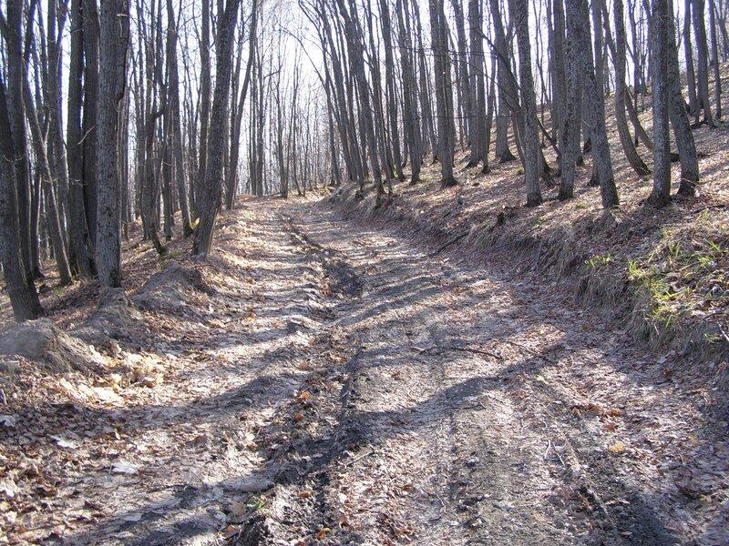 Дорога на Гранное Ухо