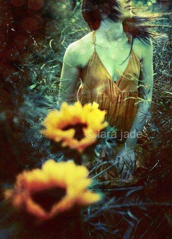 by Lara Jade Coton