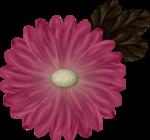 DCD_TD_Flower.png