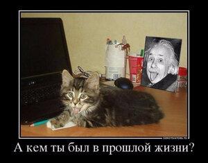 https://img-fotki.yandex.ru/get/5303/194408087.13/0_101410_c7dcf984_M.jpg