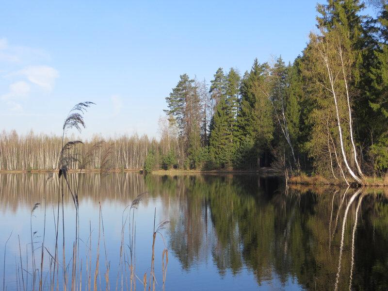 Дальний из Есинских прудов