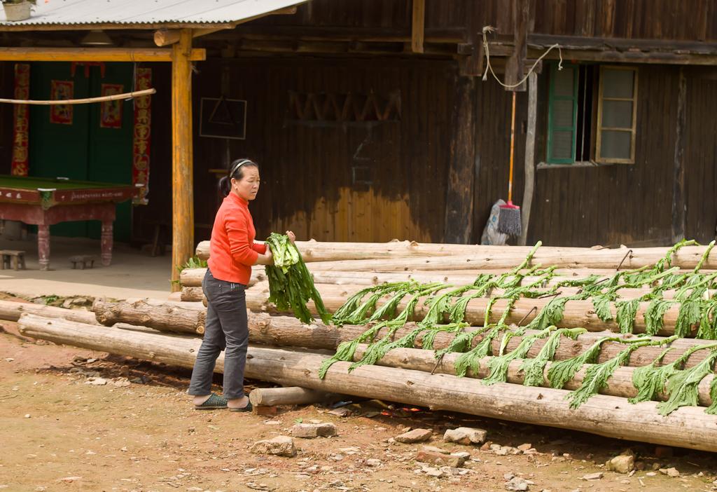17. Заготовки на зиму. Прогулка по деревне Ма'ан в регионе Ченъян в Китае.