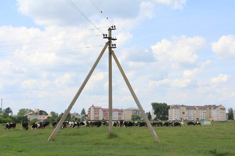0 79421 79b3cb08 XL Поездка в город Высокое, в Беларуси
