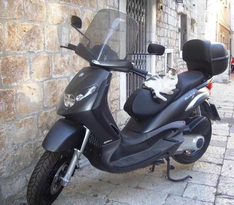Скутер в Хорватии (Scooter in Croatia)