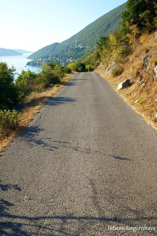 Автомобильная дорога в Жвинье