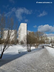 http://img-fotki.yandex.ru/get/5303/foto-re.a6/0_5f964_f37c27d9_M.jpg