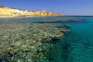 Заповедный коралловый риф