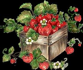 http://img-fotki.yandex.ru/get/5303/lady-annadu.55/0_61f3f_11530879_XL.jpg