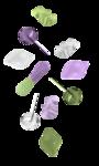 CaliDesign_CandyLand_Elements (44).png