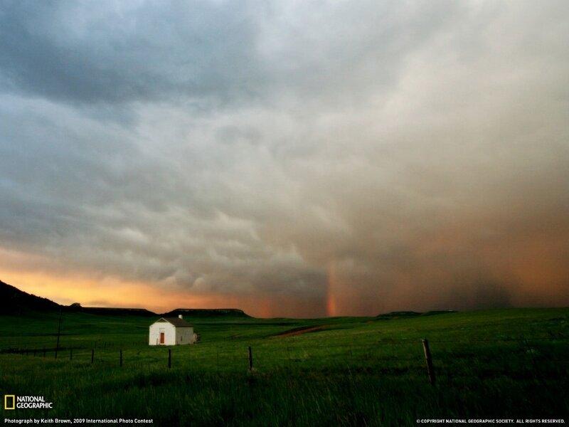 Фотографии общества National Geographic 8