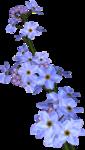 WishingonaStarr_Blue009.png