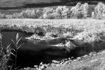 Фото Зорий Файн. Canon 350D (IR), монокль 33 мм