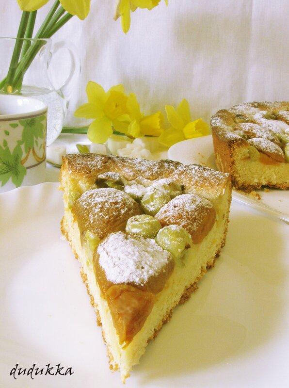 Пирог с абрикосами и крыжовником