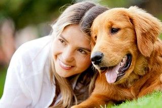 Что связывает людей и собак?