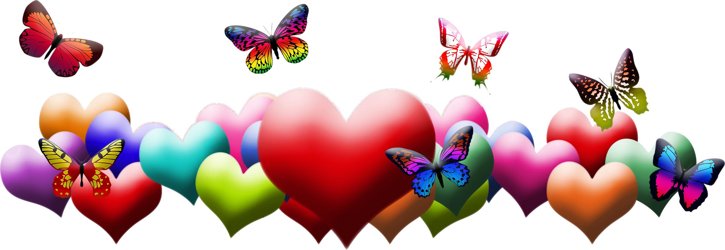Картинки по запросу разделители с бабочкой