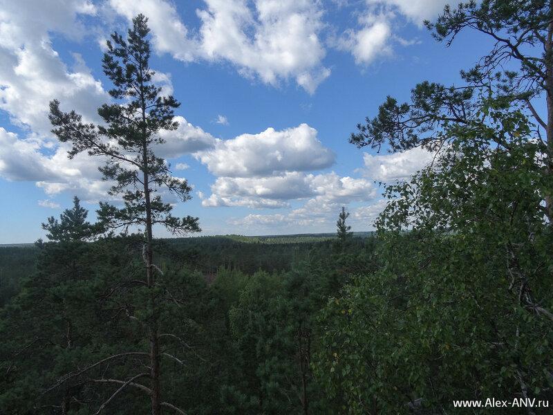 Вид с наблюдательной вышки. Видок на самом деле так себе - мешают деревья.