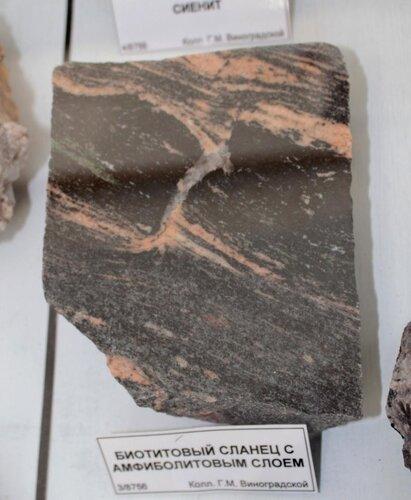 Биотитовый сланец с амфиболитовым слоем