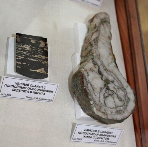 Чёрный сланец с послойным обособлением сидерита и пирита; смятая в складку полосчатая кварцевая жила с пиритом