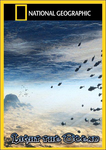 ��������� ������ / Light the Ocean (2011/DVB)