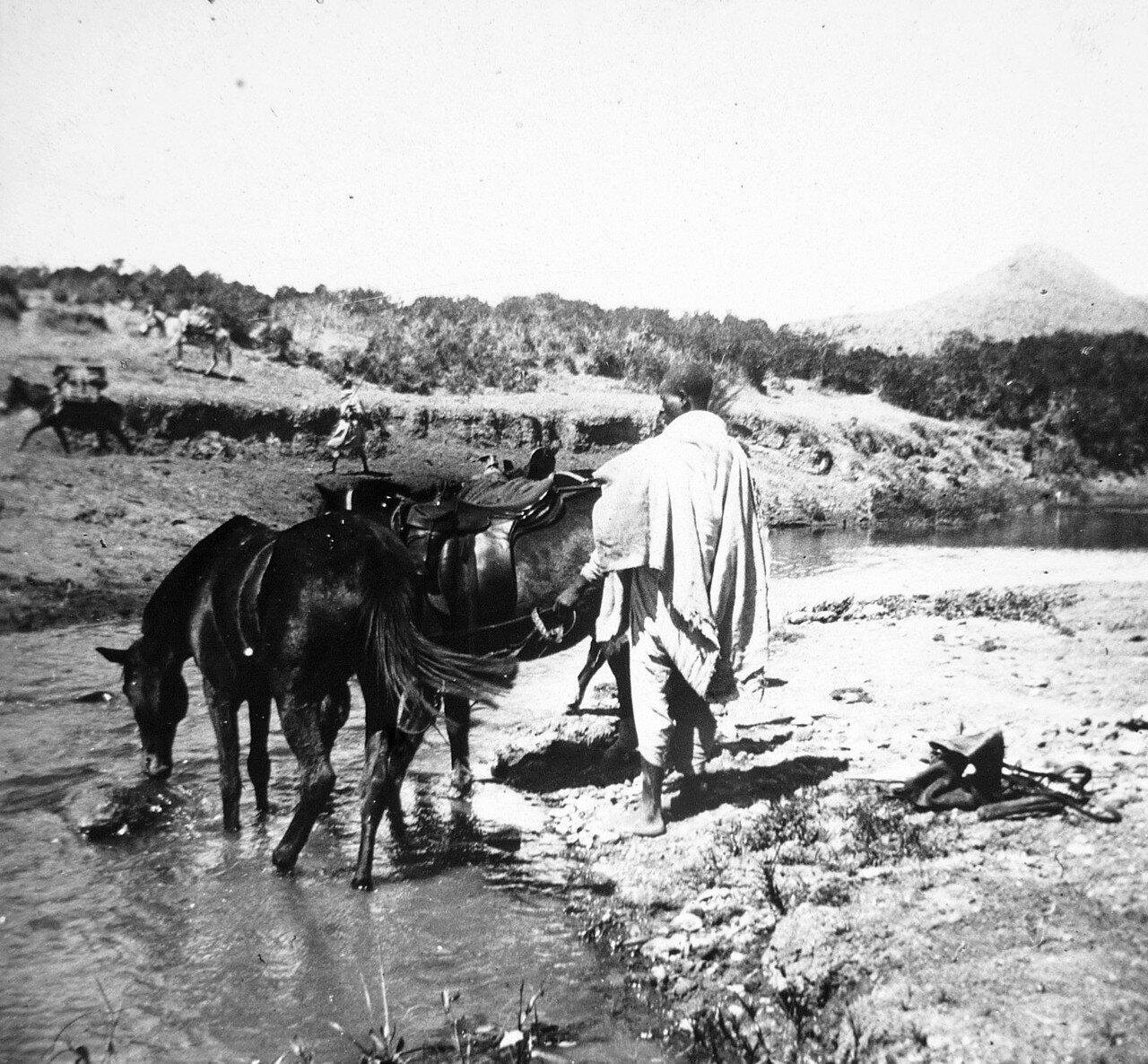 1897. Абиссиния. Водопой на дороге Джибутти - Аддис-Абеба