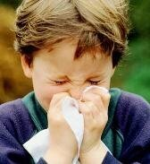 аюрведа лечение аллергии_ajurveda lechenie allergii