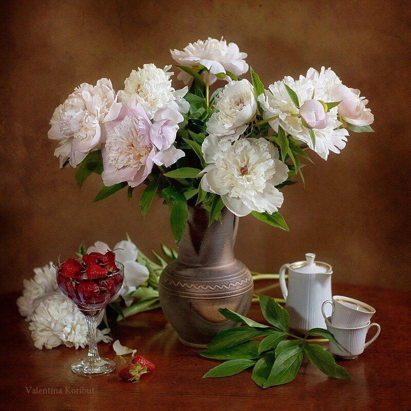 Очарованье Бело-Розового Сна