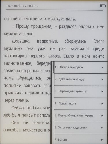 Ritmix RBK-520 - чтение текста в формате mobi