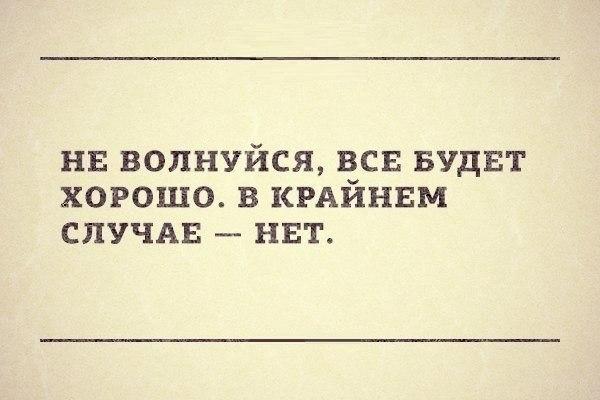 _bvYddDI8jk.jpg