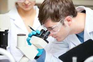 Ученые обнаружили белок, помогающий в борьбе с онкологией