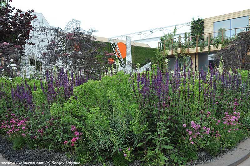The RHS Greening Grey Britain Garden (2).jpg