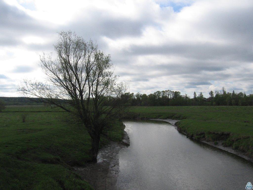 Река Боромля возле Алексино