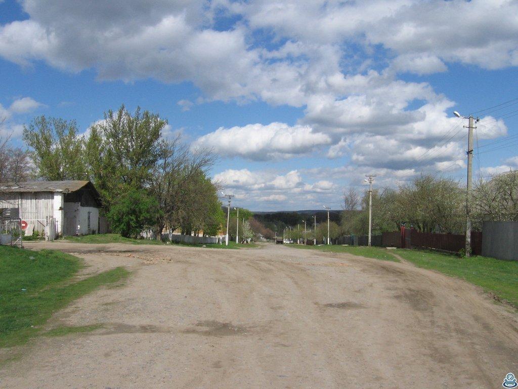 Улица в селе Становая