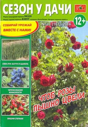 Книга Газета:  Сезон у дачи №11 (Июнь) (2014)