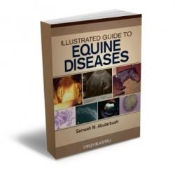 Книга Illustrated Guide to Equine Diseases